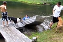 Fails con barcas