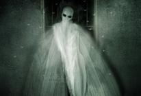 Mothman: el terror�fico hombre polilla