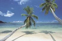 Una Recopilaci N De Playas Espectaculares Donde Perderse Unos Dias