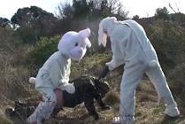 Conejo vs Cazador